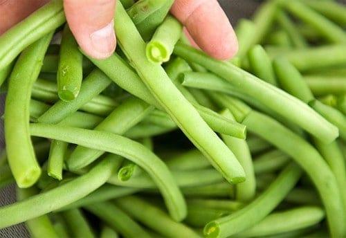 thu hoạch đậu đũa