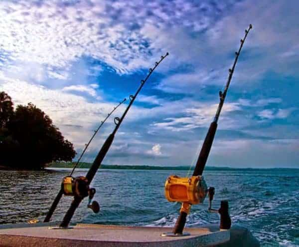 nghề câu cá