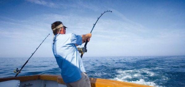 câu cá
