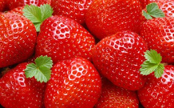 trái cây trung quốc