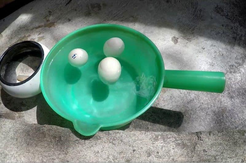 cách nhận biết trứng ấp hỏng | Món Miền Trung
