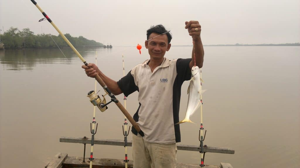 mồi câu cá bông lau