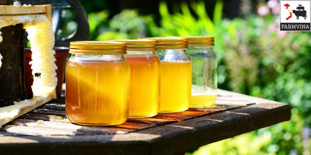 mở thùng nuôi ong