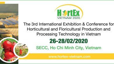 Hortex Vietnam