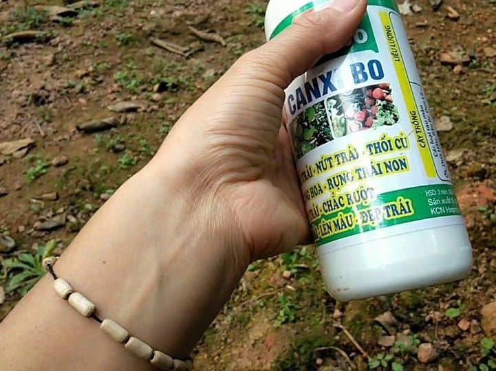 thuốc chống rụng quả